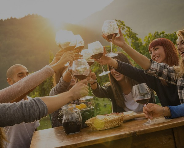 Wine and gastronomic routes around the wo